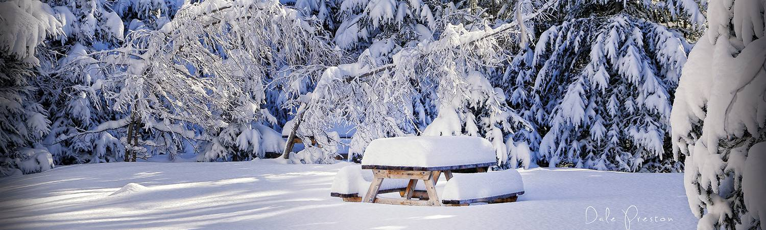 img-header-winter-5.jpg