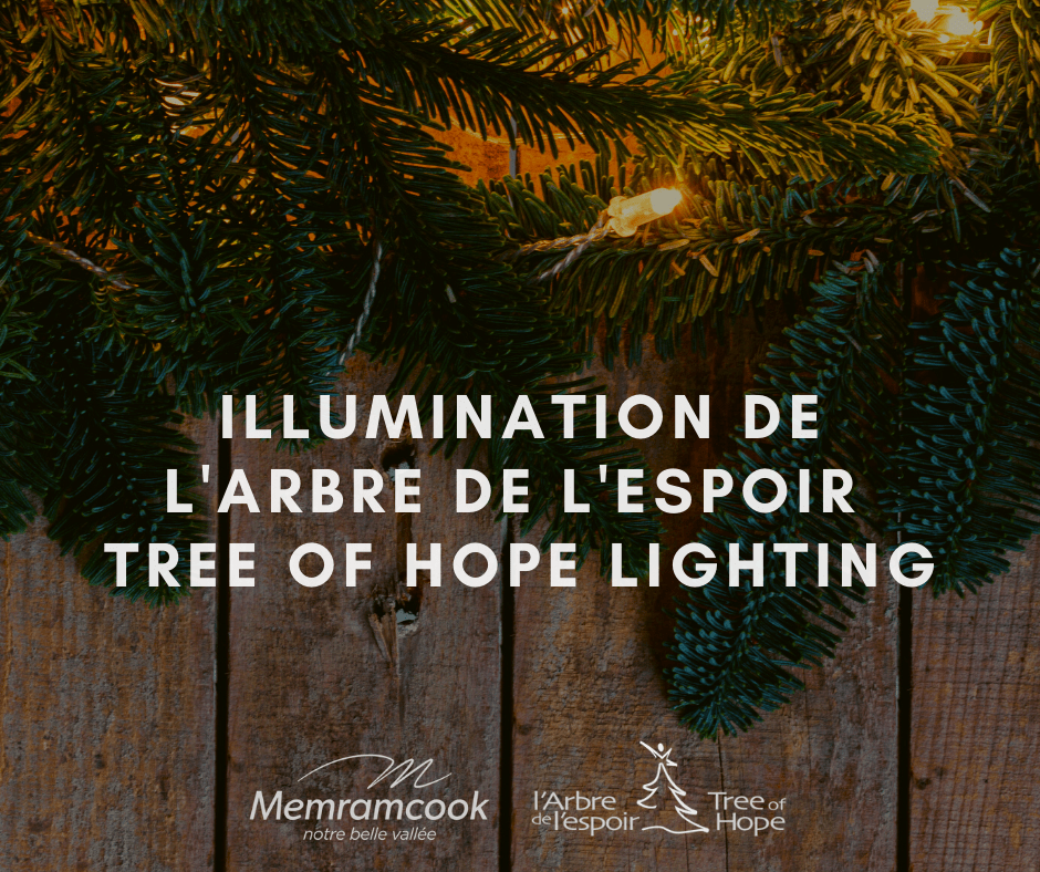 Illumination_de_larbre_de_lespoir___Tree_of_Hope_Lighting_1.png